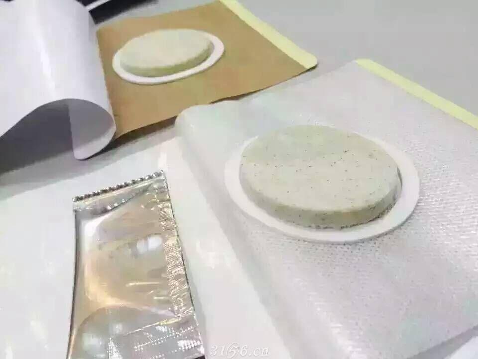 沙蒿子透皮贴