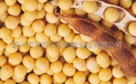 大豆异黄酮