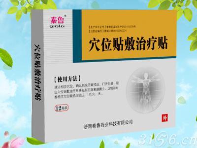 濟南秦魯藥業科技有限公司
