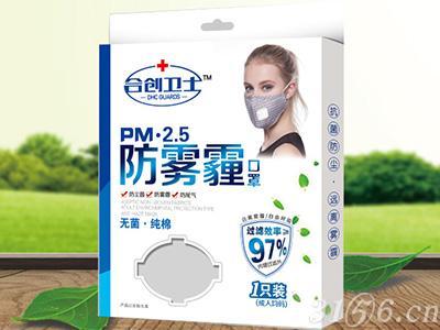 PM•2.5防雾霾口罩(成人型)