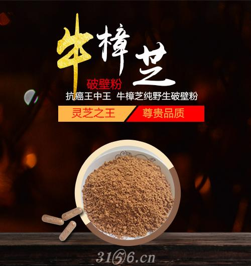 野生台湾牛樟芝破壁粉